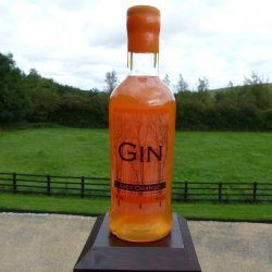 Shimmering Juicy Orange Gin 50cl