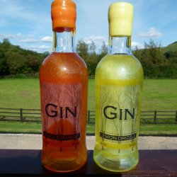 Shimmering Duo - Lemon Drizzle 50cl  and Juicy Orange Gin 50cl  Combo